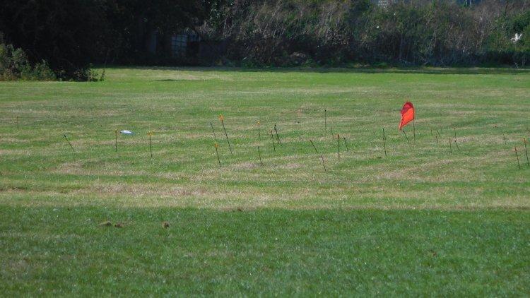 Clout field
